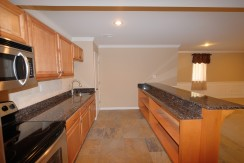 Basement Kitchen2